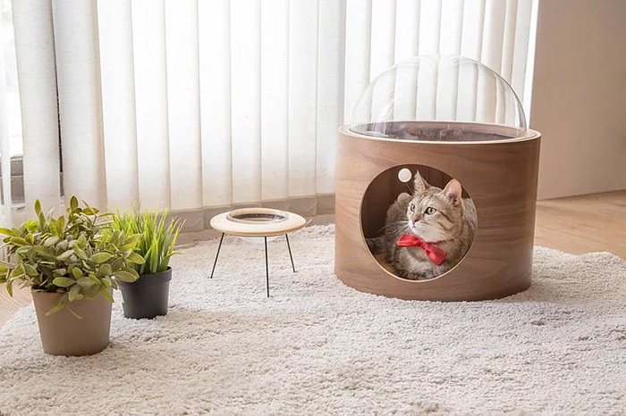 cat-spaceship-bed-myzoostudio-10-5bb5f8c259467-png__700