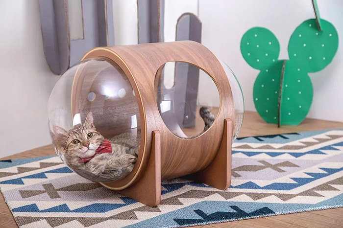 cat-spaceship-bed-myzoostudio-11-5bb5f8c5077b8-png__700