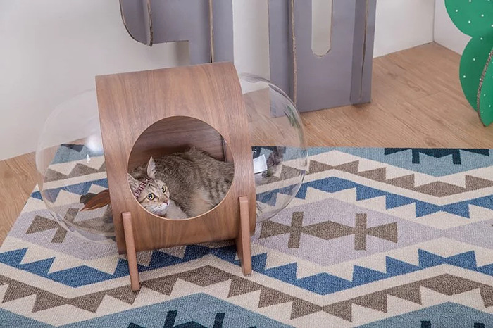 cat-spaceship-bed-myzoostudio-2-5bb5f8a554682-png__700