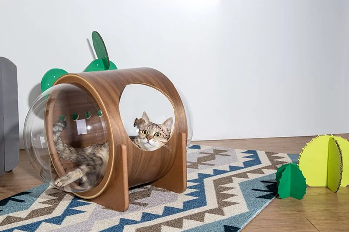 cat-spaceship-bed-myzoostudio-3-5bb5f8a7c5a3b-png__700