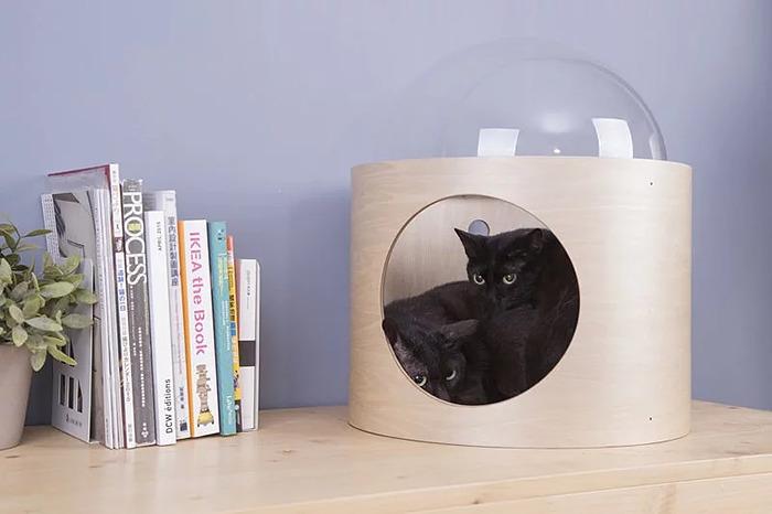 cat-spaceship-bed-myzoostudio-4-5bb5f8aaaa43f-png__700