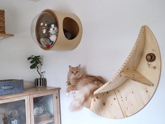 cat-spaceship-bed-myzoostudio-5bb6032c43355__700