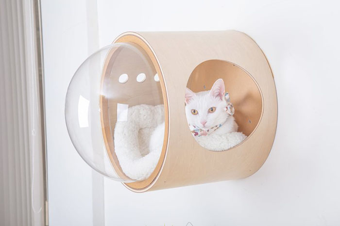 cat-spaceship-bed-myzoostudio-5bb6034850bfb__700