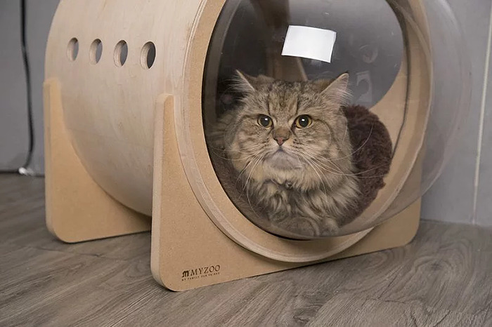 cat-spaceship-bed-myzoostudio-6-5bb5f8b253ede-png__700