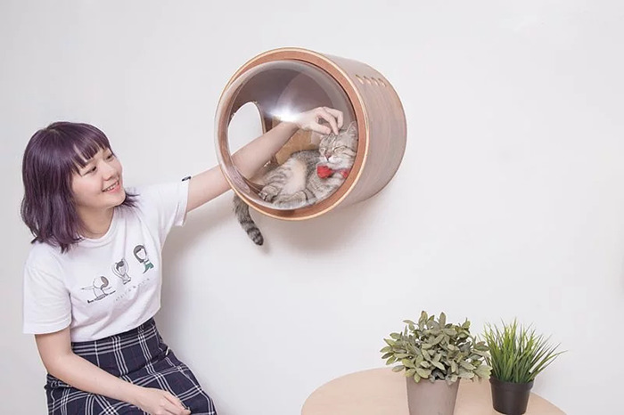 cat-spaceship-bed-myzoostudio-8-5bb5f8b7b6430-png__700